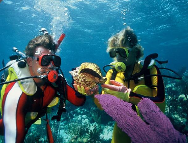 Багамские острова: нассау, дайвинг на багамах